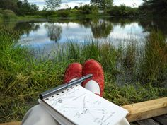 Remains of the Day: Nature Journaling as Meditation