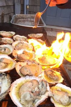 Easy Grilled Oysters on the Half Shell Recipe Ostras grelhadas fáceis na receita de meia concha Grilling Recipes, Fish Recipes, Seafood Recipes, Appetizer Recipes, Cooking Recipes, Appetizers, Cooking Game, Appetizer Ideas, Kitchens