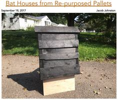 I Was Begrudgingly Tasked With Repurposing A Pile Of Pallets Into Bat Houses For Conservation