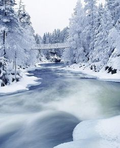 Beautifull View Of River And Snow Wallpaper Winter Wallpaper Winter Szenen, Winter Magic, Winter Season, Winter Trees, Winter White, Winter Christmas, Christmas Time, All Nature, Amazing Nature