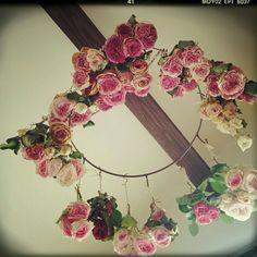 emiさんが投稿した画像です。他のemiさんの画像も見てませんか?|おすすめの観葉植物や花の名前、ガーデニング雑貨が見つかる!🍀GreenSnap(グリーンスナップ)