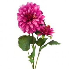 This artificial Dahlia Flower Stem with beautiful dark pink flowers is as realistic as the real thing. It is from top to bottom (including of foliage and flowers). Dahlia Flower, Pink Flowers, Artificial Flowers, Dark, Floral, Plants, Top, Beautiful, Fake Flowers