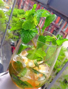 Honey Mint Julep - Gently stir bourbon, American honey and fresh mint to cocktail mixer. Rest. Add Ice to wine tumbler. Add ice to cocktail mixer and shake. Strain mixture over ice. Serve with fresh mint.