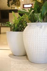 Martin Kellock Pots & Planters || Westfield Bondi Project Westfield Shopping Centre, Hothouse, Types Of Painting, Paint Finishes, Container Plants, Potted Plants, Garden Pots, Terracotta, Greenery