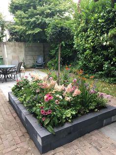Cottage Garden Design, Small Garden Design, Back Gardens, Small Gardens, Dream Garden, Home And Garden, Garden Makeover, Garden Inspiration, Garden Ideas