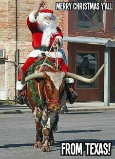 Merry Christmas Y'All from Texas