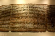 Qumran, Dead Sea Scrolls