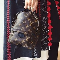 Louis Vuitton palm spring mini backpack/crossbody