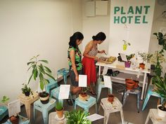 Plant Hotel, Helsinki, Finland_interviewed by VAASAA