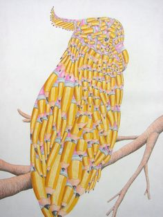 """pencil transformations """"parrotcil"""""""