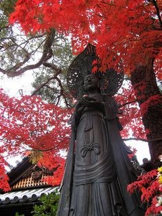 Myoshin-ji temple, Kyoto, Japan