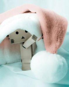 Danbo at Christmas (ehem² Arie,ko nk gmbr ni kn. Danbo, Miss Piggy, Box Robot, Amazon Box, Whatsapp Dp Images, Cute Box, Cute Photography, Little Doll, Little Boxes