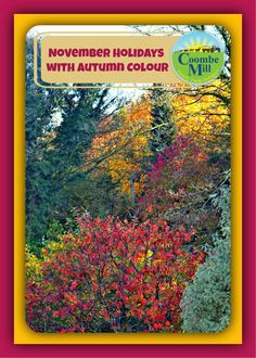 November Holidays Filled with Autumnal Colour #UK #autumn