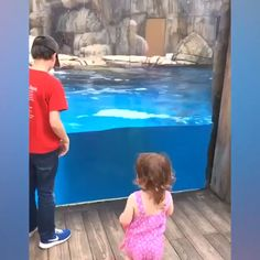 Funny Cute Baby Videos, Cute Baby Funny Videos - Baby clothing boy, Baby clothing girl, Gender neutral and baby clothing Cute Funny Baby Videos, Funny Videos, Cute Funny Babies, Funny Video Memes, Funny Relatable Memes, Funny Cute, Funny Jokes, Hilarious, Tv Funny