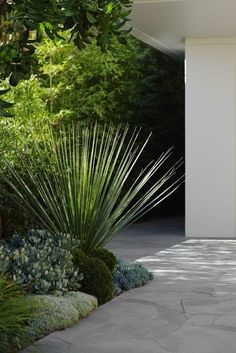 """Grey """"crazy paving"""" at front door, around front of house and steps?"""