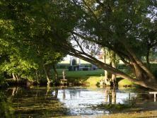 Sommer   Graf Garten