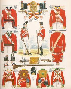 La fanteria di linea Empire, British Uniforms, Army Uniform, Napoleonic Wars, British Army, Military History, Troops, Wwii, 19th Century