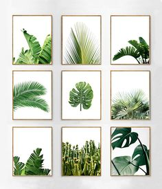 Botanical Prints Set of 9 Tropical Leaves Green Wall art Palms Banana Leaf Monstera Leaf Boho  sc 1 st  Pinterest : wall art leaves - www.pureclipart.com