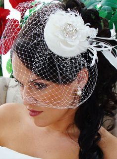 Stylish birdcage veil I like the placement. ..Farrah's is different
