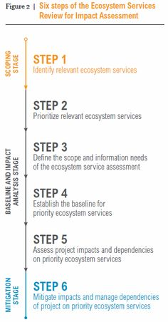 6 Steps of the Ecosystem Services Review for Impact Assessment