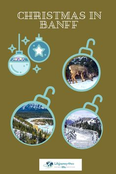 What to do at Christmas in Banff. Covered in a blanket of snow and twinkling lights, Banff will capture your heart and give you forever memories. This article delivers the magic of this winter wonderland. #banffnationalpark Fairmont Banff Springs, Canadian Pacific Railway, Canadian Rockies, Banff National Park, National Parks, Grizzly House, Sulphur Mountain, Chateau Lake Louise