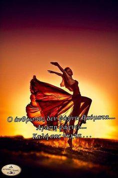 Good Night, Movies, Greek, Movie Posters, Decor, Flowers, Nighty Night, Decoration, Films