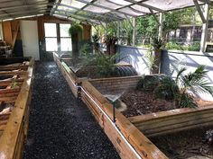 Red footed tortoise enclosure You are in the right place about Lizards tank ideas Here we offer you the most … Red Footed Tortoise, Baby Tortoise, Tortoise Care, Giant Tortoise, Turtle Enclosure, Tortoise Enclosure, Reptile Enclosure, Reptile House, Reptile Room
