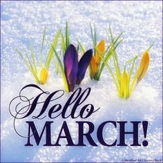Happy March to everyone! I hope you're not seeing snow where you are (unless you want to, of course!)