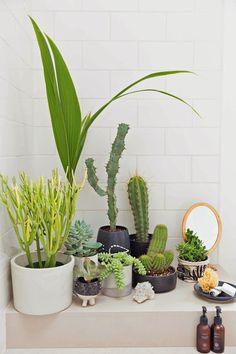 Jardin dans une salle de bains Honestly wtf via Nat et nature