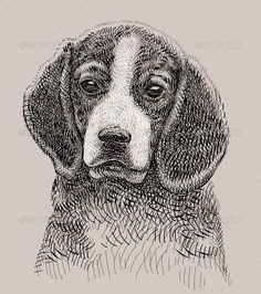 Dog Artistic Drawing #GraphicRiver Artistic dog illustration with combination lines. Included EPS (CMYK vector file) and JPEG (RGB high resolution file) Alternative keywords : head, doggy, face, beagle, fun, funny, pet, drawn, hand drawn, spontaneous, line, curve, artistic, artwork, dog, freehand, t-shirt, design, graphic, calligraphy, calligraphic, brush, stroke, symbol, icon, mascot, illustration, character, drawing, poster, sticker, cutting sticker, monochrome, black, illustrate…