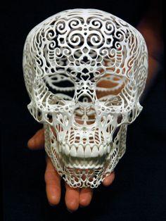 Filigree Skull Sculpture Crania Anatomica