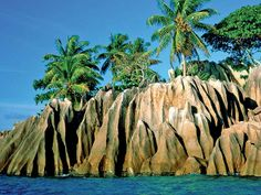 tropical island beach scenery tree at island wallpaper Seychelles La Digue, Seychelles Islands, Desktop Background Nature, Nature Wallpaper, Background Ideas, Wallpaper Pictures, Hd Wallpaper, Beautiful Landscape Wallpaper, Beautiful Landscapes