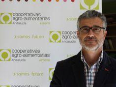 Cooperativas Agro-alimentarias pide la revisión del régimen entradas en la UE de tomate marroquí
