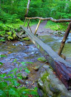 A footbridge in the Great Smoky Mountains of North Carolina - in Cataloochee Valley