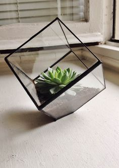 Hey, I found this really awesome Etsy listing at https://www.etsy.com/listing/198575465/stained-glass-cube-terrarium-on-sale