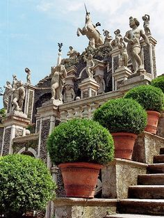 Jardin du palais Borromée, Isola Bella, îles Borromées, Stresa, Piémont, Italie.  #TuscanyAgriturismoGiratola