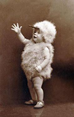 1920's photo baby chick