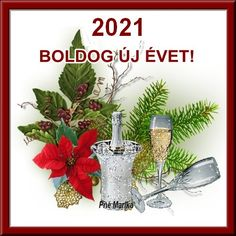 Happy New Year, Cute Cats, Place Cards, Place Card Holders, Messages, Bf Quotes, Merry Christmas Pictures, Pretty Cats, Happy New Year Wishes