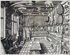 Cabinet of Dane Ole Worm from Museum Wormianum, 1655.