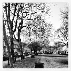 Cleaver Square, Kennington #london #instagram