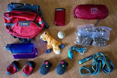 Hiking with Dogs: Food and Gear Packing List