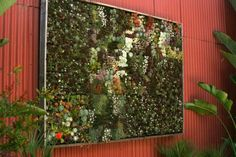 the famous living wall at Flora Grubb Gardens in San Francisco