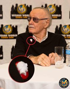 Stan Lee wearing a Stan Lee cameo