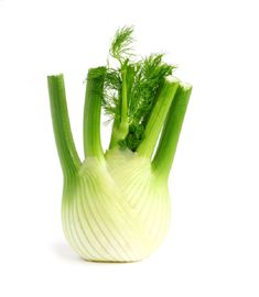 Food Highlight: Fennel. #fennel #lowcarb #gastricsleeve #WLS #weightloss #BocaRaton #Miami Ginger Slice, Ginger Tea, Coriander Leaves, Fresh Coriander, Cooking Fennel, Bland Food, Cooking For Three, Foeniculum Vulgare, Cooking White Rice