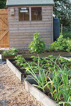 Allotment Sheds | Gardens & Gardening | Pinterest | Allotment ...