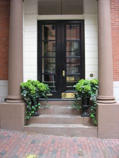 Front entrance planter idea - love the green on green look.