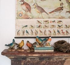 Eclectic Home Tour - Adored House - Kelly Elko Rustic Wood Furniture, Black Furniture, Bird Identification, Moldings And Trim, Buying A New Home, Vintage Birds, Botanical Prints, Basket Weaving, House Tours