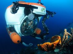 Explore Underwater in a Mini Sub > Curacao with Kids: Top Family Attractions | About.com Family Vacations
