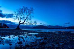 """Anthony Harrison est un globe-trotter adepte de la photographie. Ses clichés lui permettent de partager sa vision de notre magnifique planète. Il admet que l'île du sud de la Nouvelle-Zélande est son """"endroit préféré sur Terre"""", et..."""