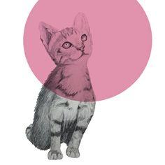 cat Art Print by morgan kendall